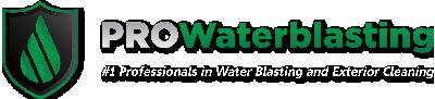 Pro WaterBlasting